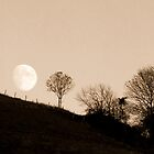 Full Moon Rising by mikebov