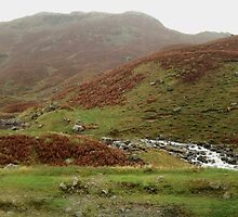 Easedale Tarn Panorama by GeorgeOne