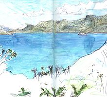 View Over Anse Soleil by John Douglas