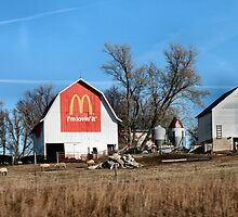 McDonalds Farm?!?! by Keala