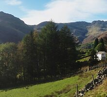 Langdale Walk by GeorgeOne
