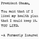 Obama Healthcare Lie by liberteed