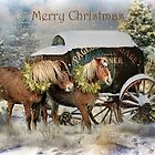 Country Christmas by Trudi's Images