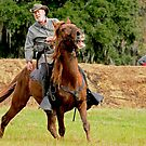 Civil War Soldier and Horse by imagetj