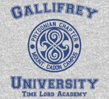 Gallifrey University by ajf89