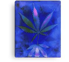 Hemp Lumen #2  Marijuana, Cannabis Canvas Print