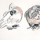 Dove Duo4 by WoolleyWorld