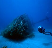 Wreck with a Diver by MikMoxter
