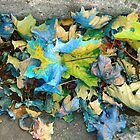 Autumn Harlequin by RC deWinter