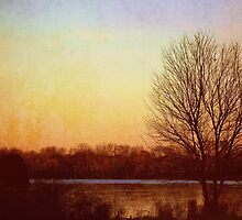Autumn Twilight by Kelly Marszycki