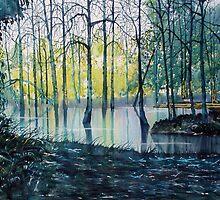 Wetlands on Skipwith Common by Glenn Marshall