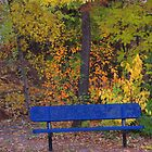 Fall bench by dfrahm