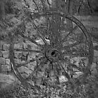 Withered Wagon Wheel by Tina Hailey