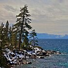 Tahoe Snow by Richard Rushton