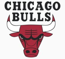 Chicago Bulls Logo by Rob DelZotto