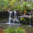 Pages Creek Fall by Tim Beasley