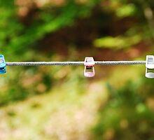 Plastic Pegs on Line by jojobob