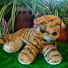 Toy Tiger by Vivian Eagleson
