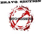 Bravo Section by taranv