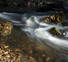 Autumn On The Brook. by Dave Staton