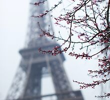 Spring at the Eiffel Tower - Paris France by mattnnat