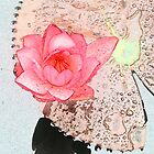 crayon color sketch pink waterlily flower and its big floating leave by naturematters