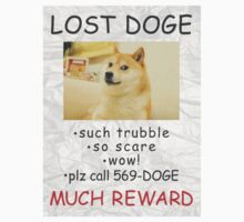 Lost Doge by Fandominator