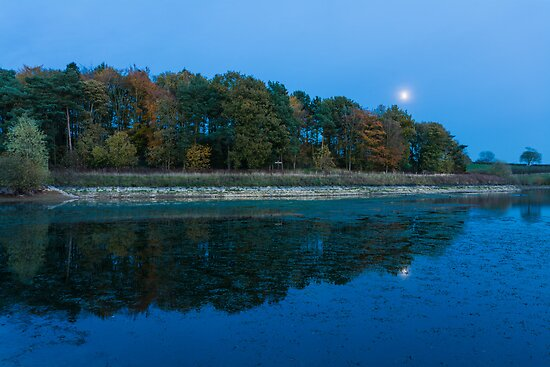 Reflections by moonlight by Ralph Goldsmith
