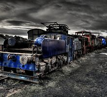 Marley Hill Engine Yard by Andrew Pounder