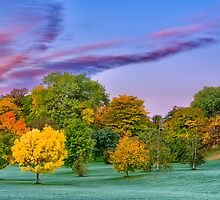 Autumn colours-4 by Mike Bachman