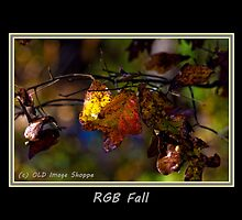 RGB Fall by Otto Danby II