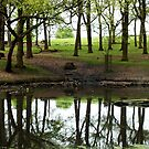A pond in Richmond Park by Ludwig Wagner