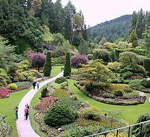 Sunken Garden 2 by Camilla