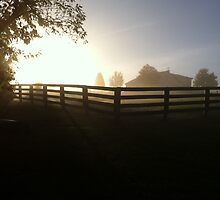 Morning on the Farm by YellowBarn
