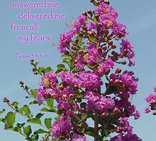 Glorify the Lord Crape Myrtle by paws4critters
