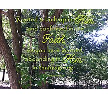 Rooted in God Photographic Print