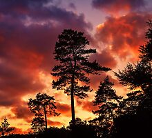 Red sky at night by JEZ22
