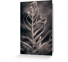 Tangled Greeting Card