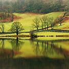 Green Rydal with a Hint of Russet by VoluntaryRanger