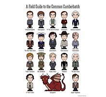 A Field Guide to the Common Cumberbatch (print or poster) Photographic Print