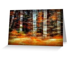 Time Flies Through Forests Changing Greeting Card
