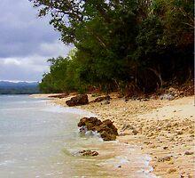 Vanuatu by Elisabeth Dubois