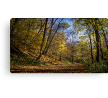 walking on the forest Canvas Print