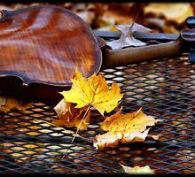 The Sound of November  by ArtbyDigman
