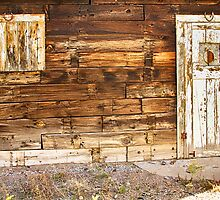 Rustic Old Colorado Barn Door and Window by Bo Insogna