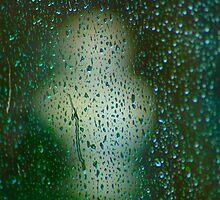 Rainy Window overlooking sculpture. by Billlee