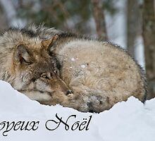Timber Wolf Christmas Card French 7 by WolvesOnly