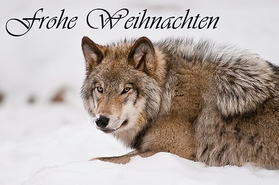 Timber Wolf Christmas Card German 11 by WolvesOnly