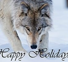 Timber Wolf Holiday Card 12 by WolvesOnly
