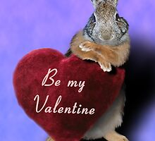 Be My Valentine Bunny Rabbit by jkartlife